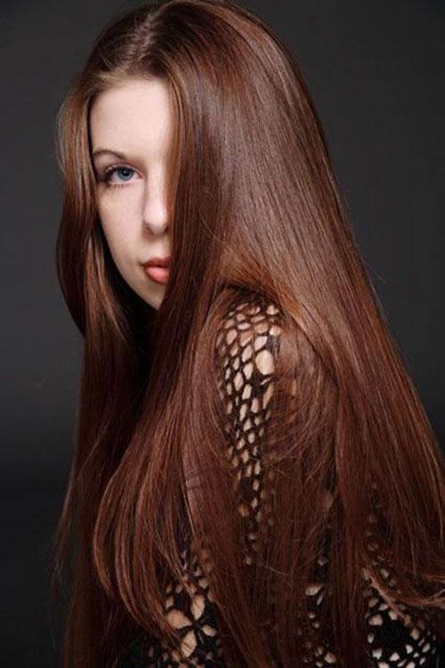 Chestnut Brown Hair